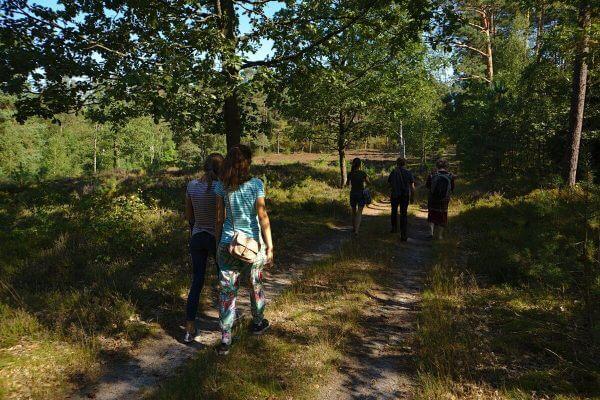 Schreibspaziergang durch Wald und Heide